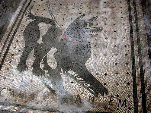 cave canem mosaic pompeii, house of the tragic poet pompeii